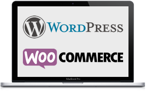 Desarrollo de plugins en WordPress y WooCommerce